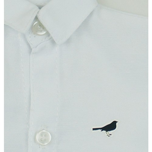 [Limited] 70cm up+ * Heat-Transfer shirt - RSP014 Birds